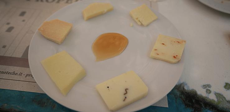 Wine Tasting Discover Umbria