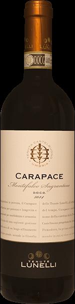 Carapace Sagrantino di Montefalco Tenuta Lunelli 2015 0.75 lt.