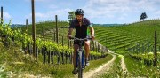 E-bike Wine Tour